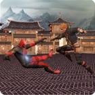 Superheroes Vs Kungfu Fighters icon