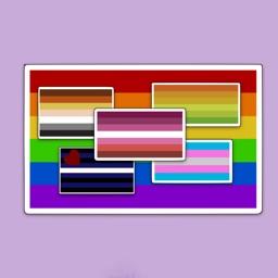 PrideNotPrejudice Solidarity Flags