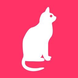 养养宠物:全国养宠社交APP领养送养猫咪狗狗平台