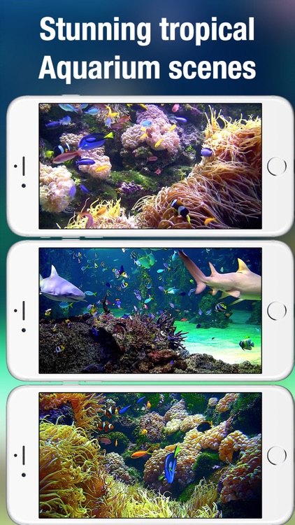Aquarium Live HD + screenshot-1