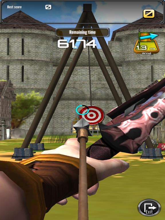 стрельба из лука большой матч для iPad