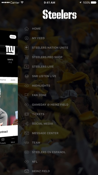 Pittsburgh Steelers review screenshots