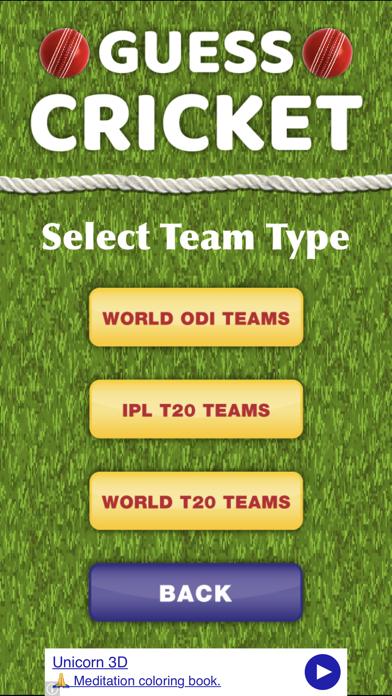 Guess Cricket 2018 screenshot three