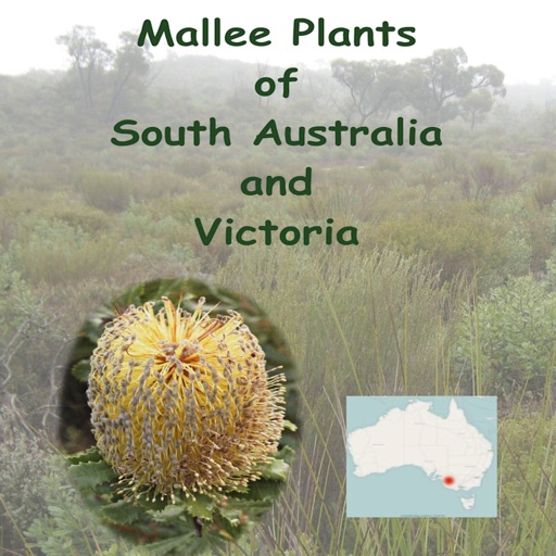 Mallee Plants of SA and Vic.
