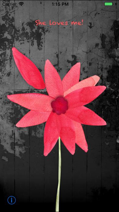 点击获取Flower LOVE Check