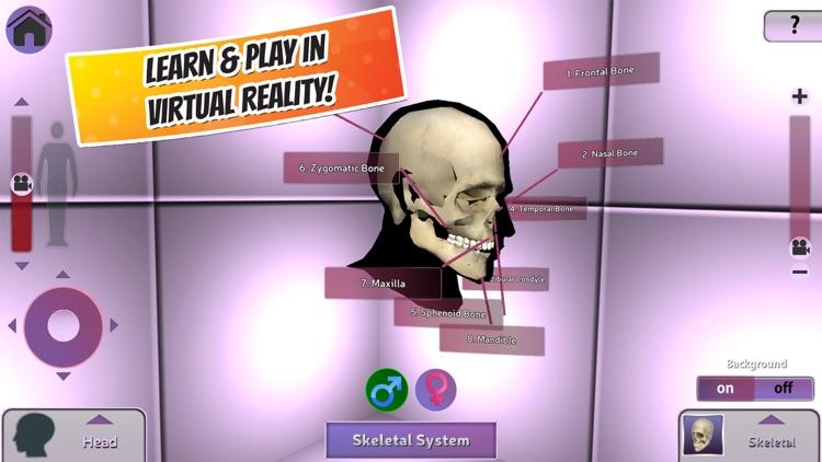 Popar Human Anatomy