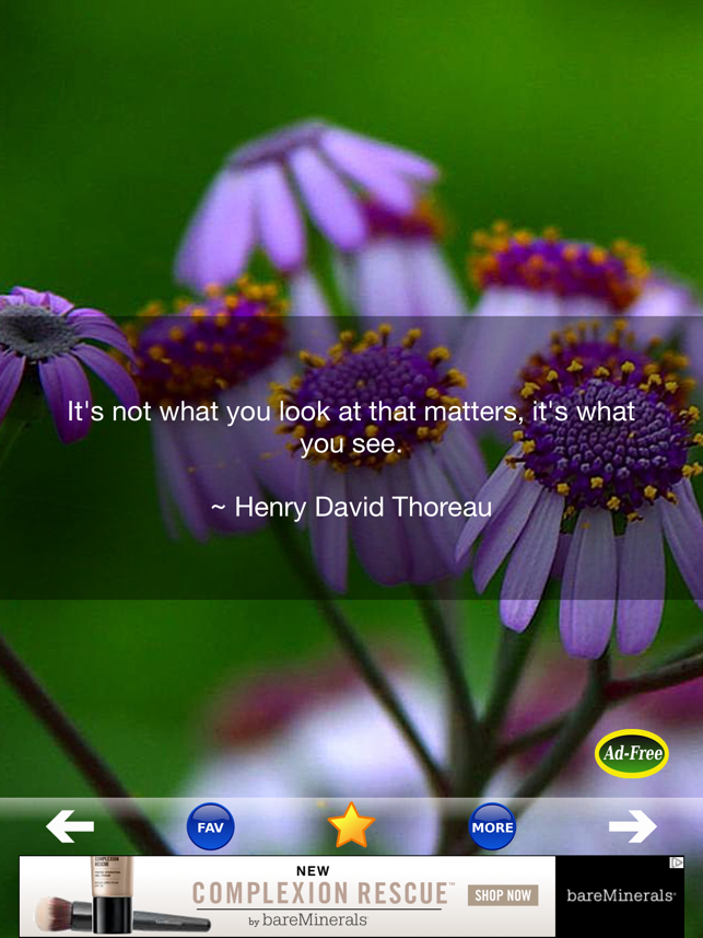 ‎Inspirational Quotes & Sayings Screenshot