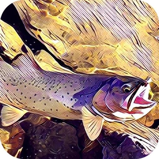 Montana Fishing