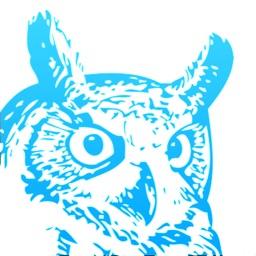 Blue Owl - Trading Wisdom