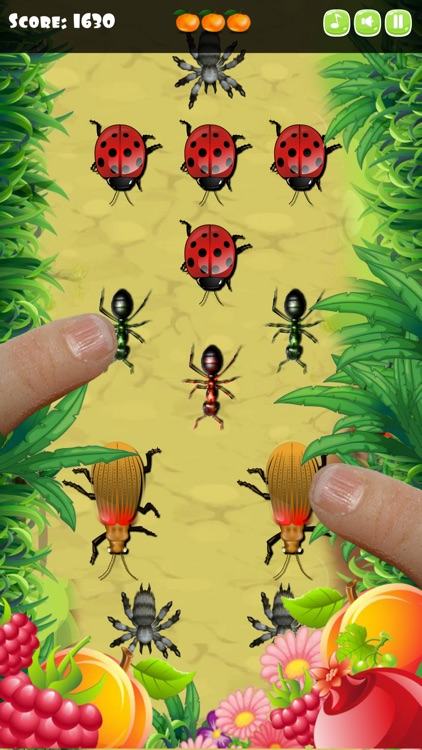 Insect Smasher for Kids
