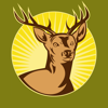 Solunar Best Hunting Times