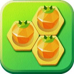 Hexa Farm :Simple Block Puzzle