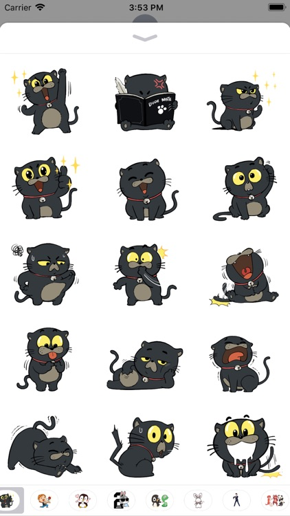 Mr. Cool the Cat