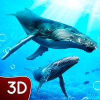 Hump Back Whale Ocean Sim