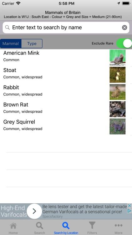 Mammals Of Britain