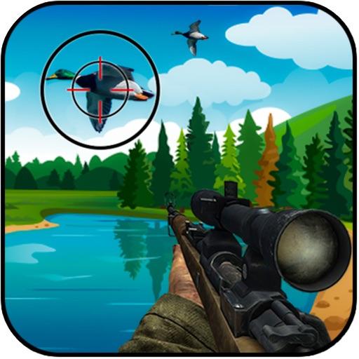 Shot Bird Hunting Experiennce