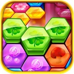 Match Block: Hexa Puzzle