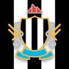 Team Newcastle United