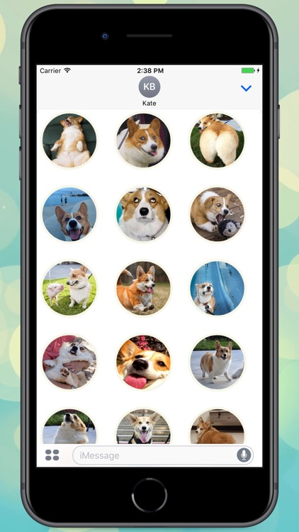 Fluffy Corgi! Stickers