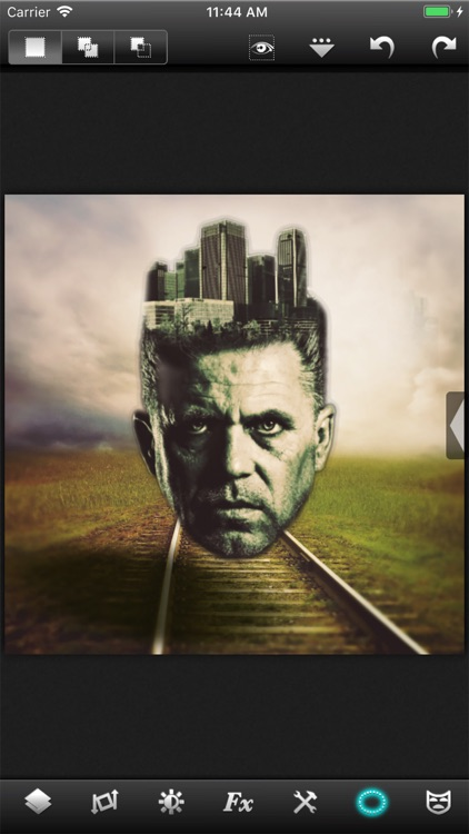 Leonardo - Photo Layer Editor screenshot-7