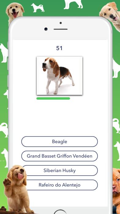 Dog Quiz - Which dog is that?のおすすめ画像1