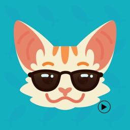 Animated Loving Cat Stickers