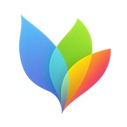 MindNode 4 Apple Watch App
