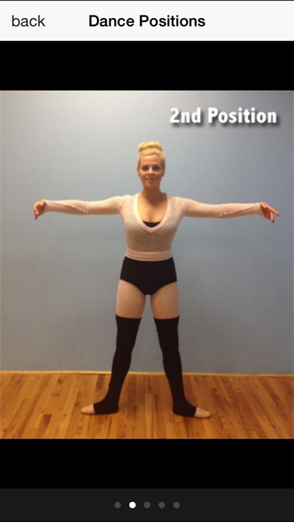 Ballet Barre Exercises screenshot-4
