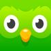 24.多邻国 (Duolingo)