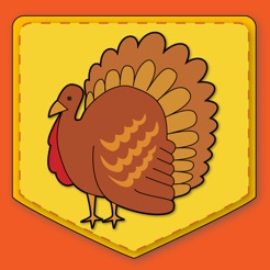 Image result for thanksgiving match game app