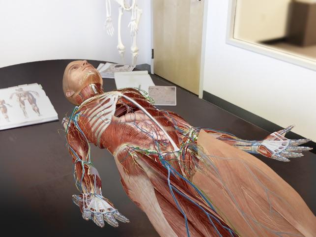 Human Anatomy Atlas 2018 On The App Store