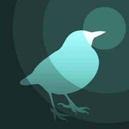 Telecharger Bird Radar Pour Iphone Ipad Sur L App Store Style De Vie
