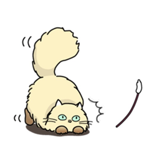 Catmoji - Cute Persian Cat Emoji Sticker