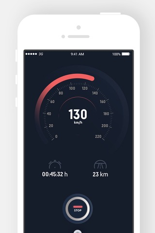 Reckless Driver Speed Tracking - náhled