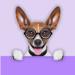 132.狗狗翻译器 - 你的逗狗助手