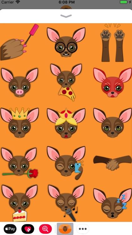 Chocolate Chihuahua screenshot-3