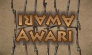Awari: The African Stone Game