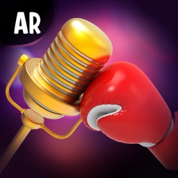 Sing AR Fight
