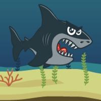 Codes for Survivor Shark Hack