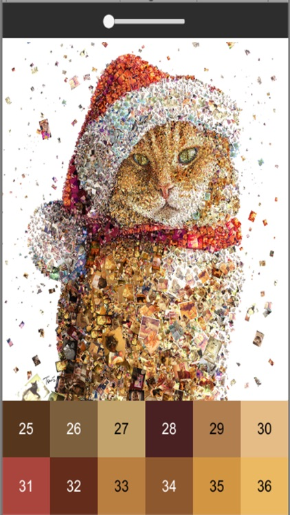 Meow Art Color By Number