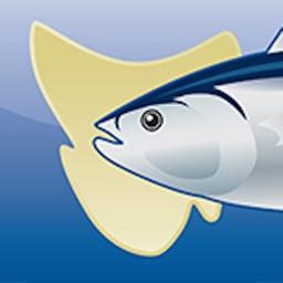 Tasmanian Sea Fishing Guide