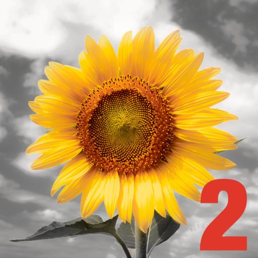 iSplash 2 взрыв цвета Photo Editor Профессиональный Раскрашивание и Перекрасить инструмент