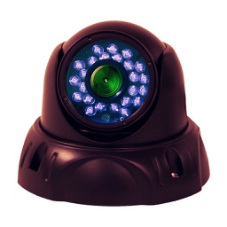 Viewer for EasyN IP cameras