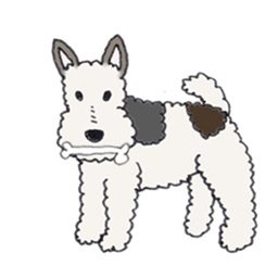 Wire Fox Terrier Dog Sticker