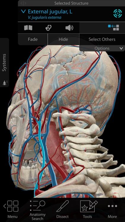 Human Anatomy Atlas 2018