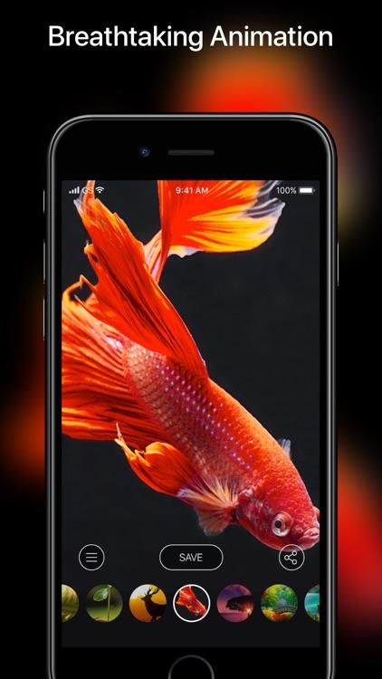 Live Wallpaper HD Lite