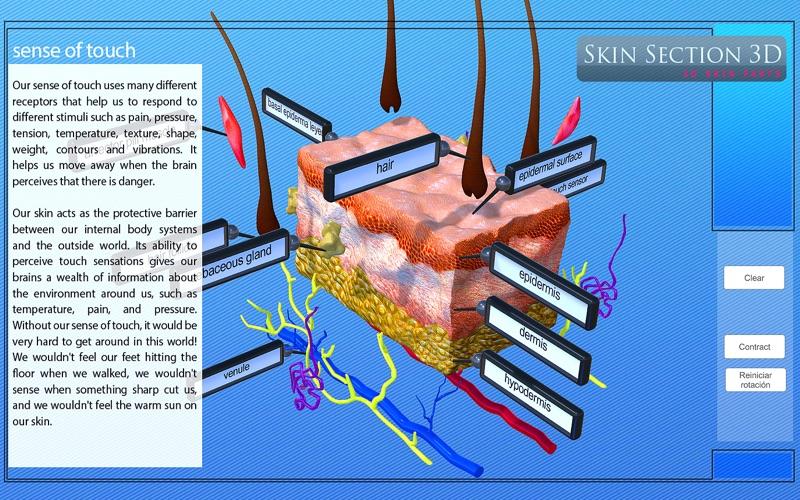 Skin Section 3D скриншот программы 3