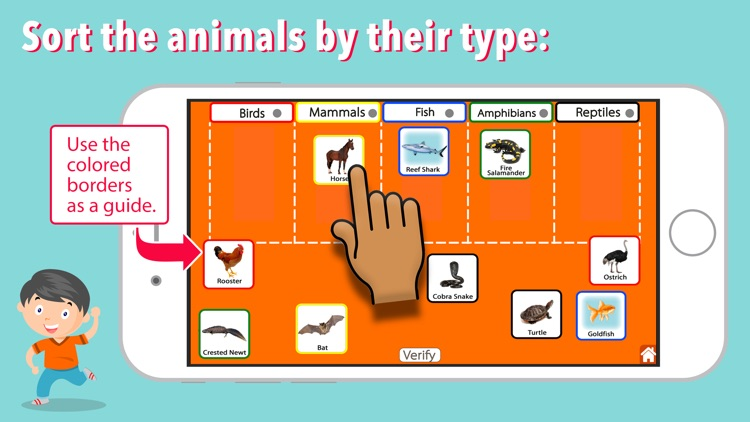 Animal Kingdom (Vertebrates) screenshot-5