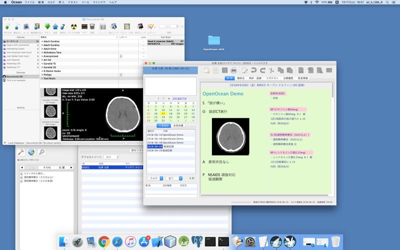 HorliX скриншот программы 6