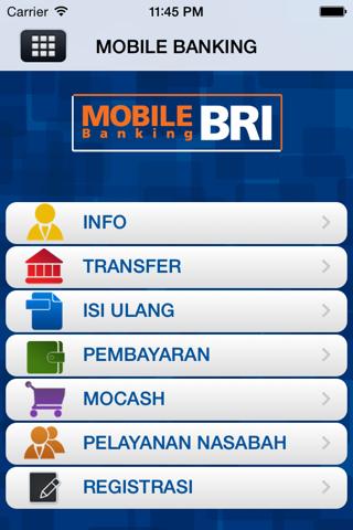 BRI Mobile - náhled